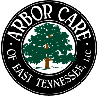 Arbor Care of East Tennessee - Knoxville Tree Care Service